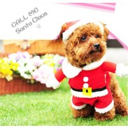 Christmas Pet Clothes