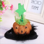Beautiful Hallowenn Pet Hat