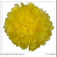 Promotional Tissue Paper  Flower Ball Peach